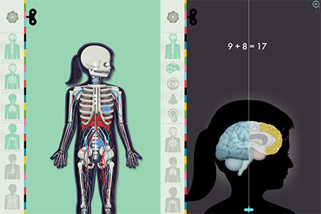 The Human Body for iPhone & iPad Teaches Anatomy with Smart Animations